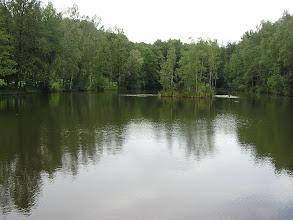 Photo: C6080032 Obora - Arboretum Bramy Morawskiej