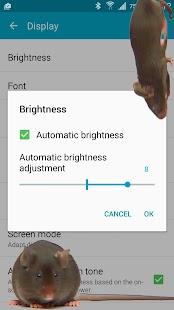 Myš na obrazovce strašný vtip - náhled