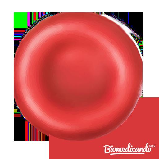 Células do Sangue
