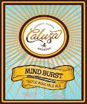 Calusa Mind Burst