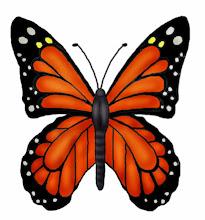 Photo: Monarchfalter - Schmetterling