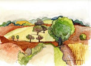 Photo: 2007 Late summer farm fields. Oregon, WI. Watercolor.