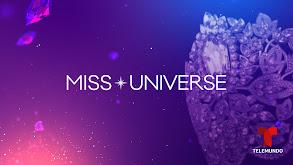 Miss Universo, edición especial thumbnail