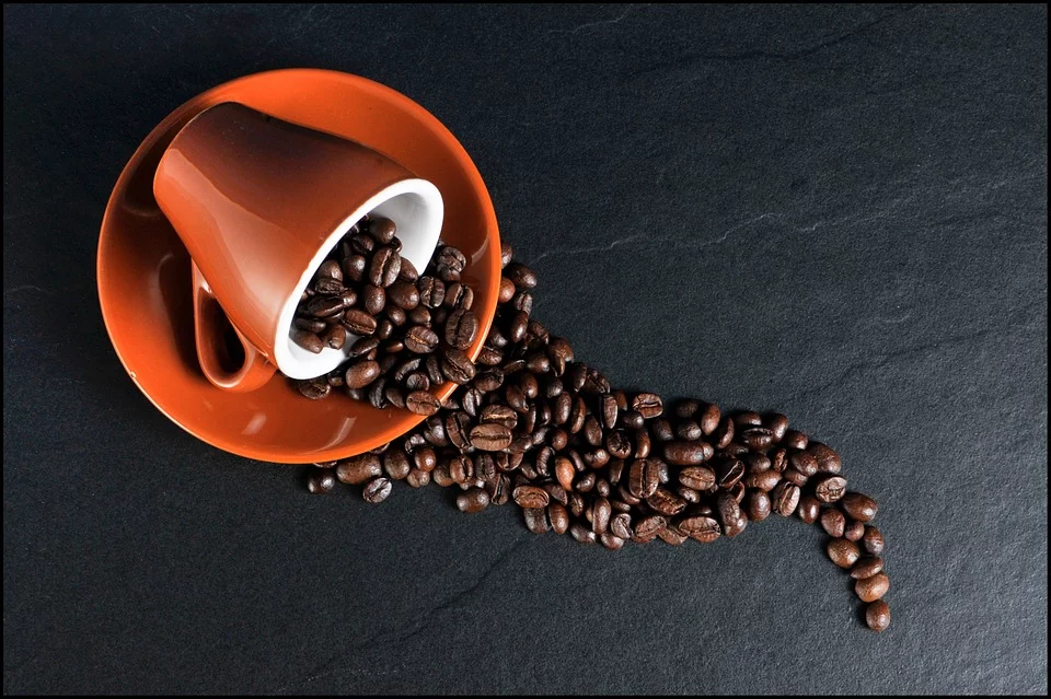 cup of coffee beans for coffee lovers