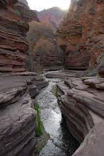 Photo: Deer Creek