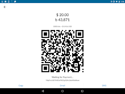 Bitcoin Pay- screenshot thumbnail
