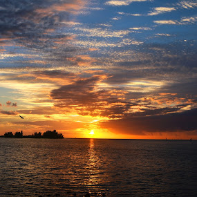 In All HIS Glory by Don Kuhnle - Landscapes Sunsets & Sunrises ( clouds, water, color, florida, sunset, clouds and sea )