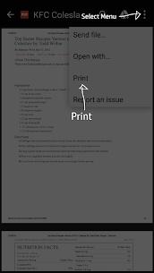 HP Print Service Plugin 2