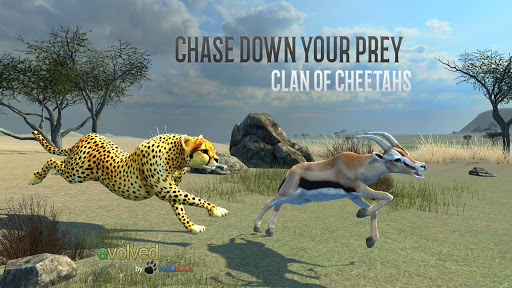 Clan of Cheetahs screenshot 1