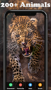 4K HD Wallpapers – HD Backgrounds 1.0.5 MOD + APK + DATA Download 2