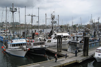 Photo: Burası Balıkçı limanı, bunlar da  Pasific Ocean Balıkçı Tekneleri.