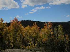 Photo: Aspens colors were awesome!