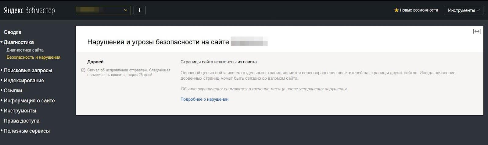 Дорвей в Яндекс Вебмастере