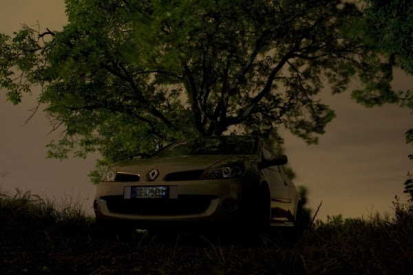 Clio RenaultSport di NeJi