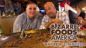 Bizarre Foods America thumbnail