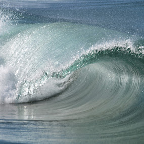 Waves of Passion by Carlos Palhau - Nature Up Close Water
