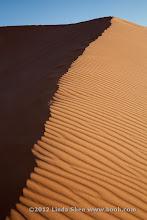 Photo: Coral Pink Sand Dunes State Park, Utah