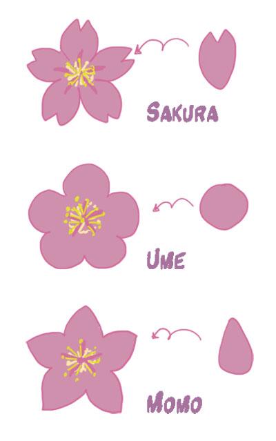 Didizuka Pense Bete Differencier Les Fleurs De Cerisier Prunier Et Pecher Japonais