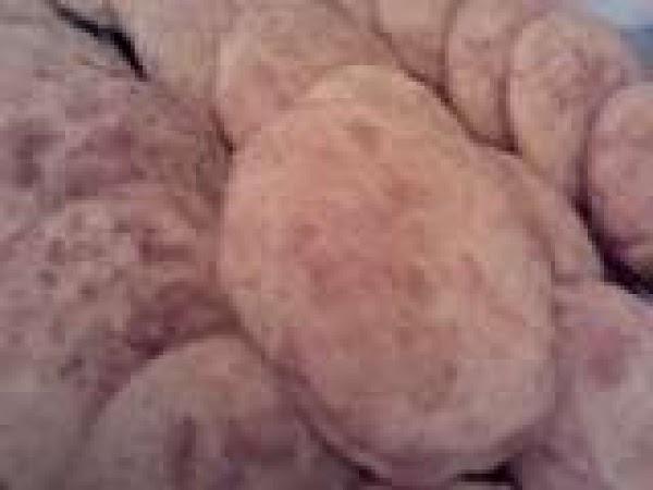 Secret Cinnamon Swirl Cookies Recipe