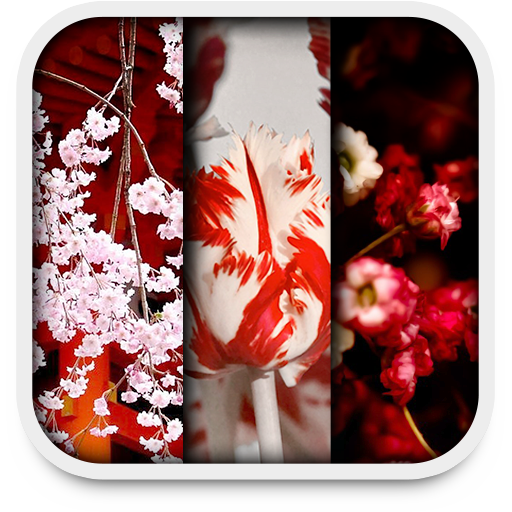 spring live.. file APK for Gaming PC/PS3/PS4 Smart TV