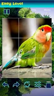 Puzzles Game for Birds - náhled
