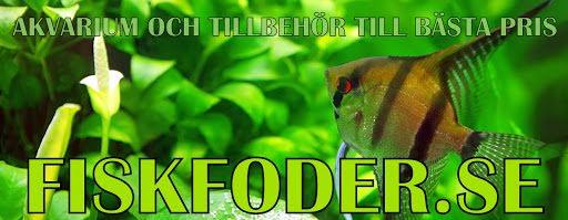 fiskfoder