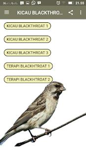 Kicau Blackthroat Audio Track - náhled