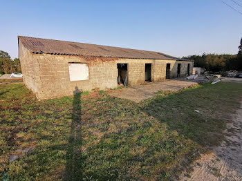 terrain à Locminé (56)