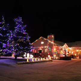 Ready For Christmas by Patricia Phillips - Public Holidays Christmas ( alaska anchorage christmas lights night )