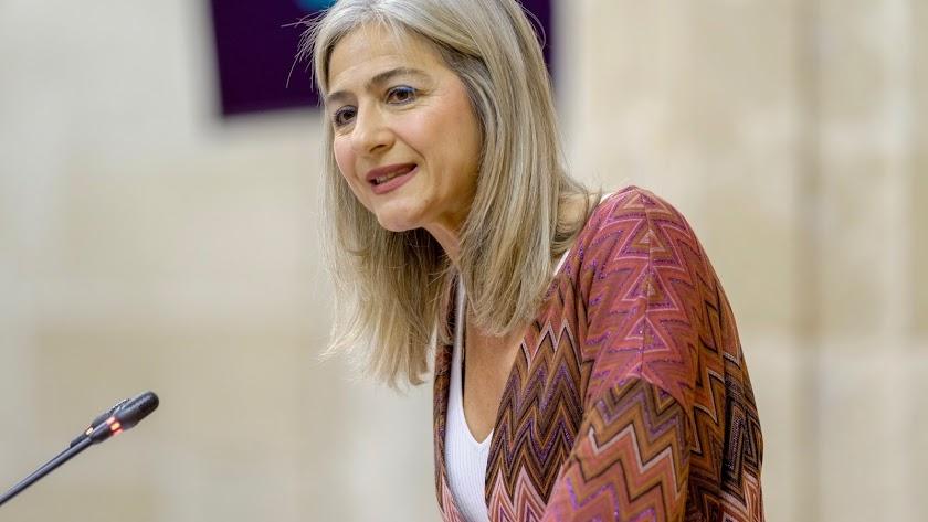 Patricia del Pozo, consejera de Cultura.