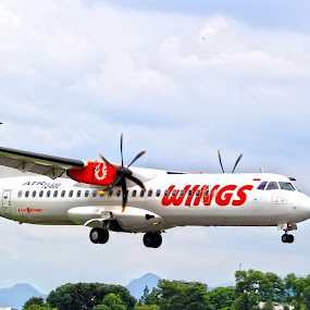 wings have wings by Wibi Prayogo - Transportation Airplanes