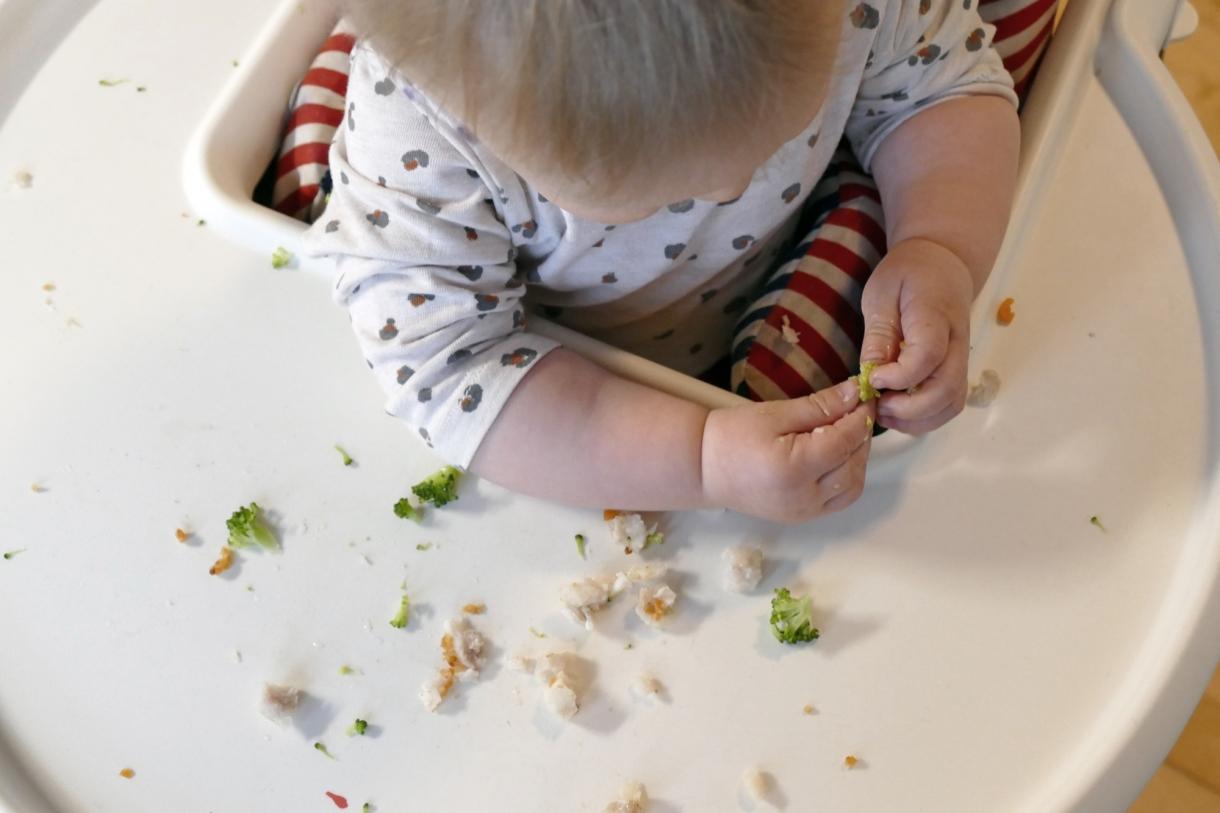 plockmat bebisar recept