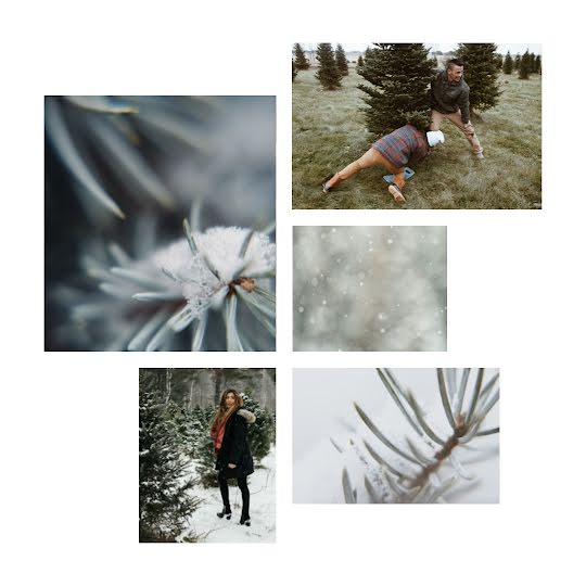 Evergreen Winter Collage - Instagram Post Template