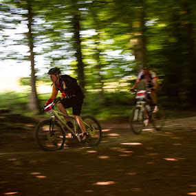 The Chase by John Puddy - Sports & Fitness Cycling ( bike, speed, mountain bike, woodland, race )
