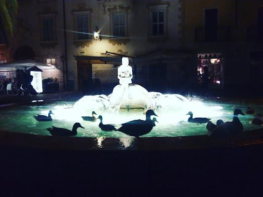 La danza delle anatre  di rizzelli_stefania