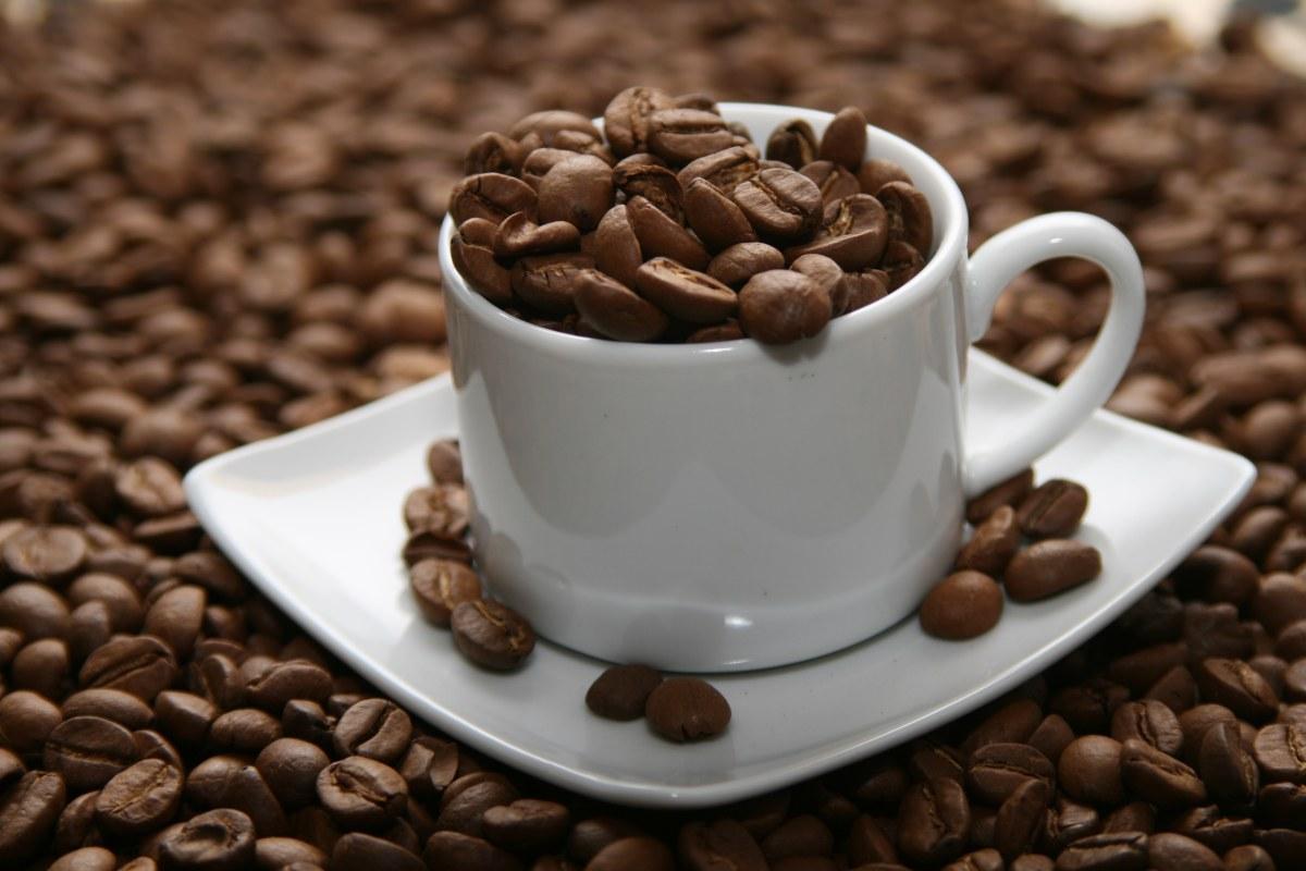Cà phê arabica- thức uống hấp dẫn, tuyệt vời