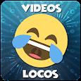 Videos de Locos