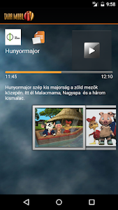 TARR MobilTV screenshot 6