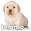 Stickers del Perrito Triste para WhatsApp icon