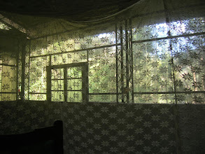 Photo: Looking E.N.E. from within mosquito net