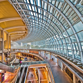 Lines & Curves by Richard Amar - Buildings & Architecture Architectural Detail ( marina bay sands interior, lines, curves )
