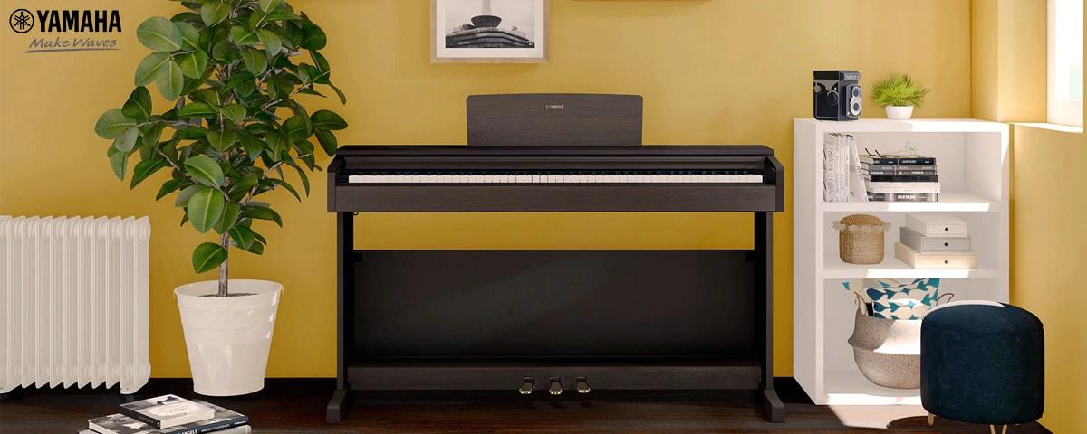 đàn piano giá rẻ cho người mới học