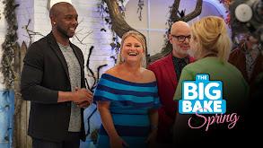The Big Bake: Spring thumbnail