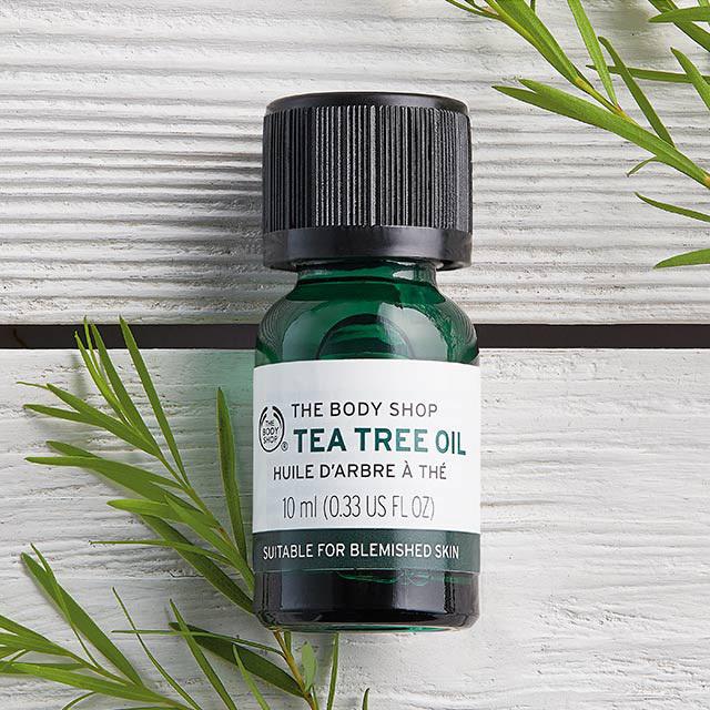 tinh chất trị mụn Tea Tree Oil