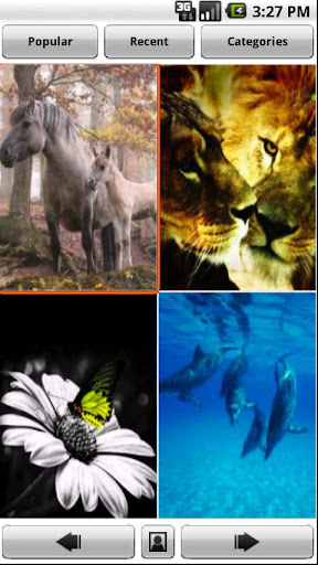 Backgrounds HD Wallpapers screenshot 7