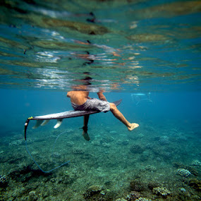 Waiting Surfer by Paul Kennedy - Sports & Fitness Surfing (  surfer, surfing,  coral reef )