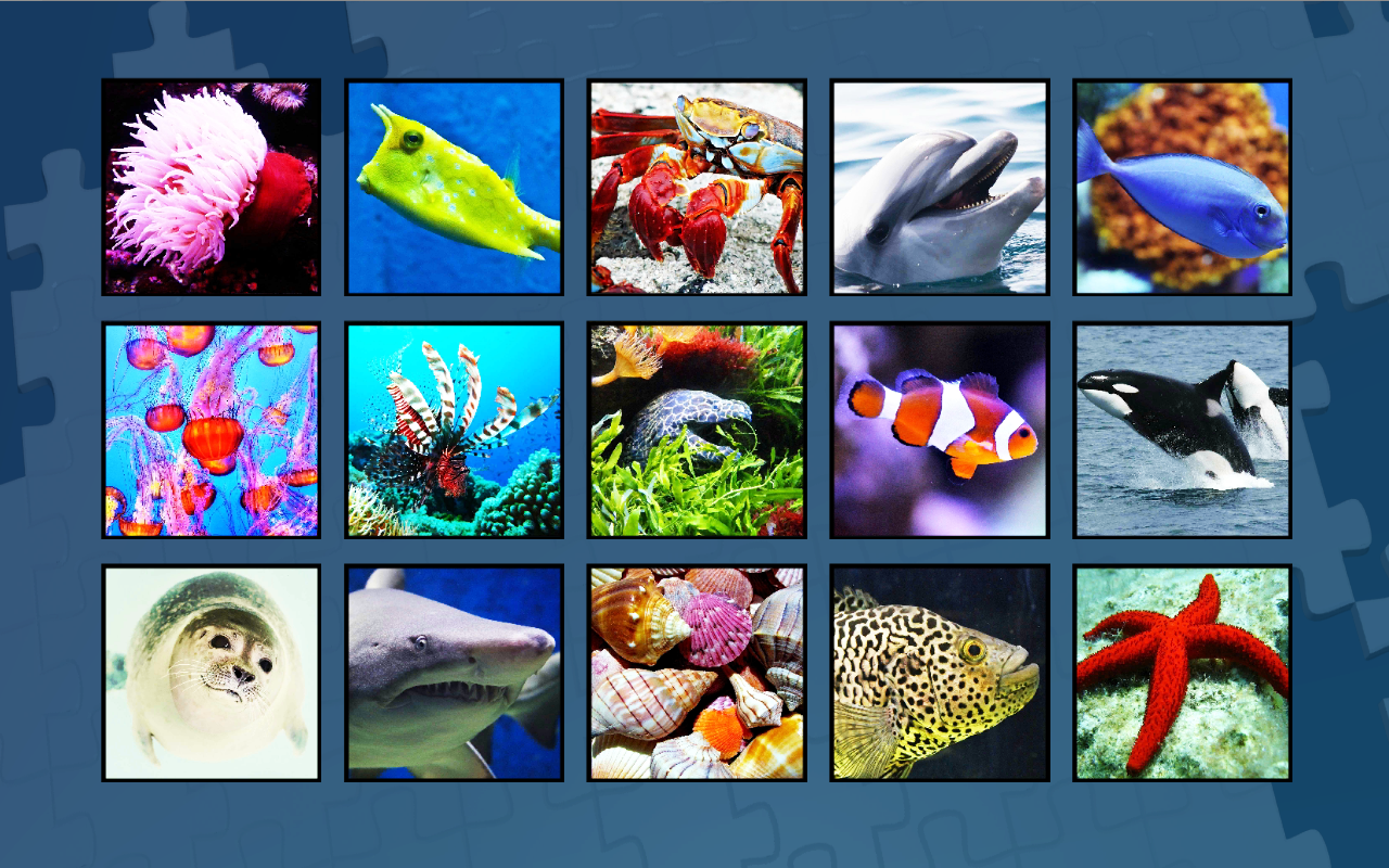 Super Jigsaws Marine Life- screenshot