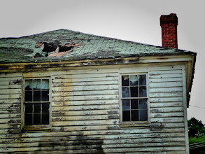 Photo: Vulture house.