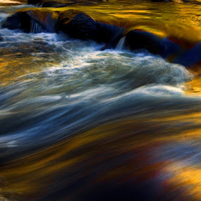 Little River Reflections, Dupont State Forest by Jonathan Wheeler - Landscapes Waterscapes ( moving water, dupont state forest, little river, autumn reflections, fall reflections )