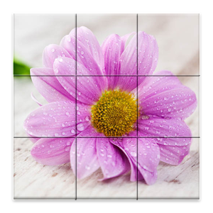 Style Flowers Puzzle for PC and MAC